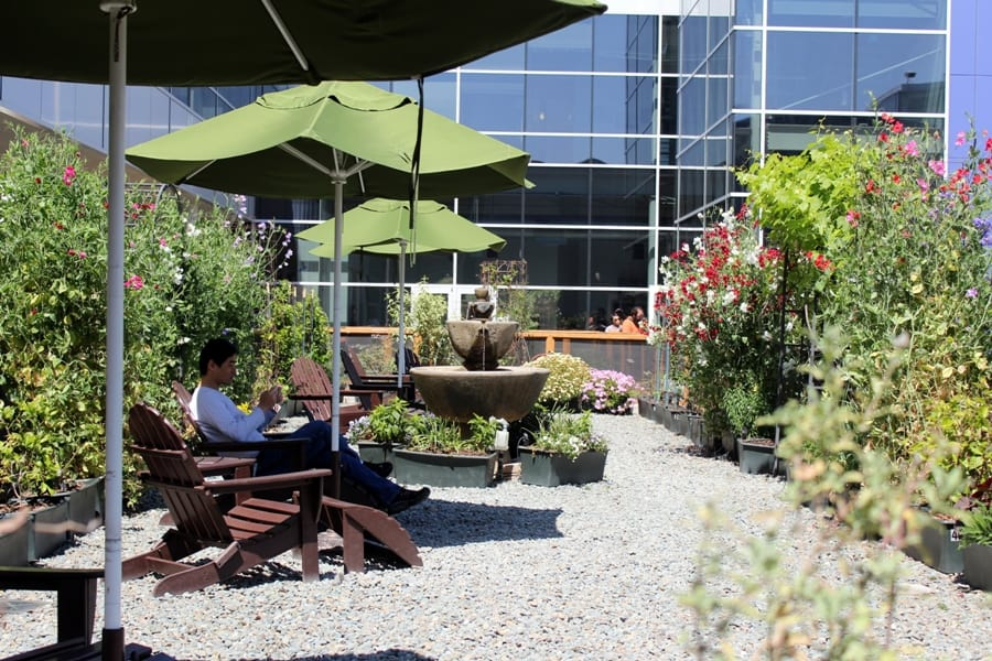 Relaxation area on Google campus