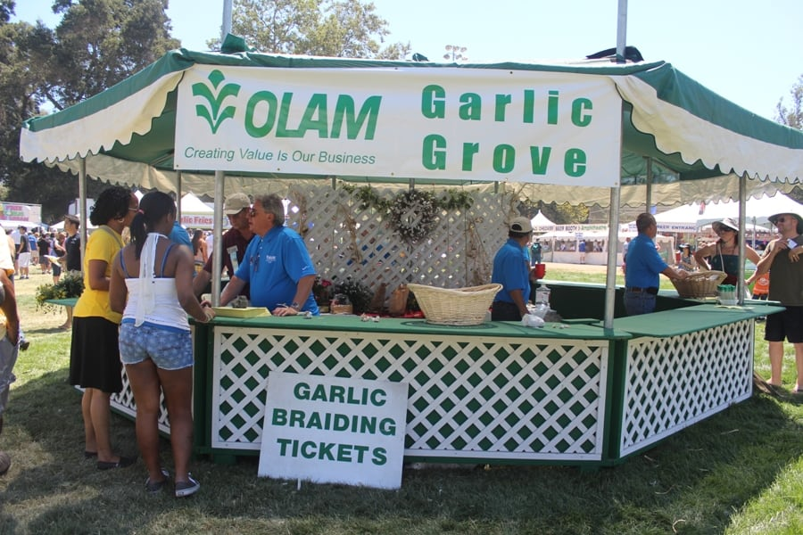 Garlic grove and garlic braiding at the Gilroy Garlic Festival