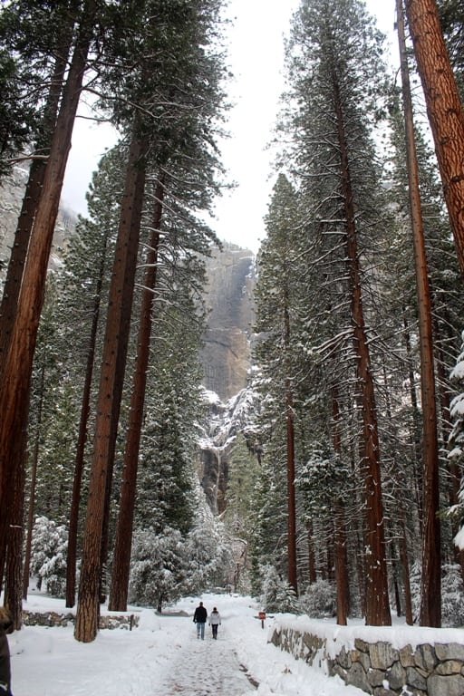 Lower Yosemite Fall trail in snow