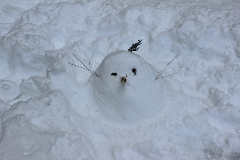 Crappy snowman