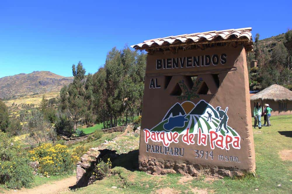 Day trips from Cusco - Parque de la Papa