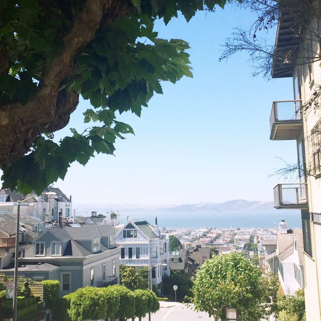 San Francisco Itinerary - Best Neighborhoods to Stay in Pacific Heights:Marina